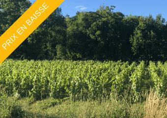 Prix en baisse - terrains à Commune de Savigny-lès-Beaune