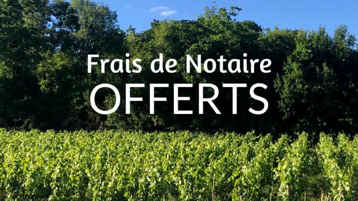 Frais de notaire OFFERTS à Savigny-lès-Beaune