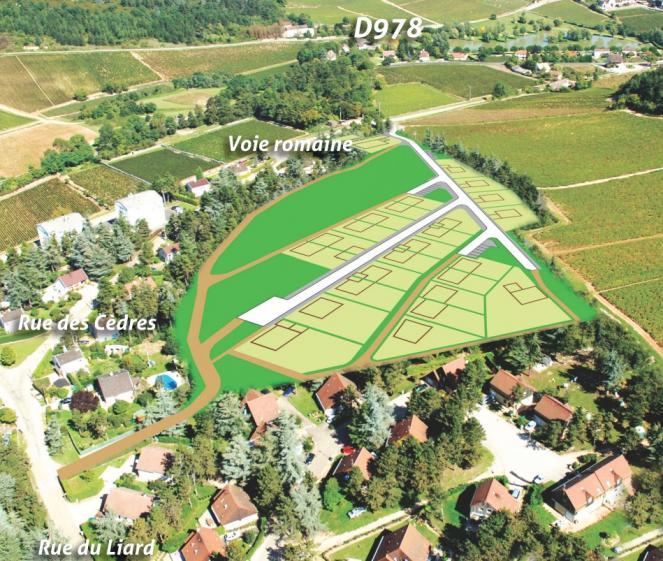 Vue aérienne Les Cèdres - terrains constructibles